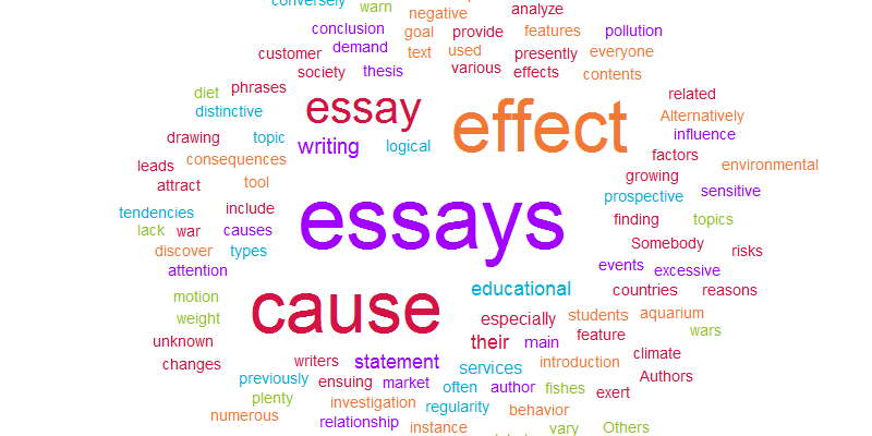 How to write an essay: A step by step guide
